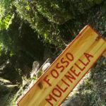 Fosso della Molinella Perugia Vecchia Park