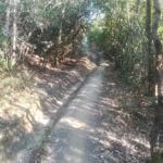 Discesa del Cinghiale Perugia Vecchia Park