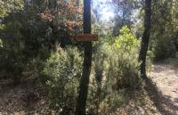 Ariete Perugia Vecchia Park