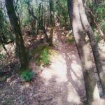 Canyon Argentino Perugia Vecchia Park