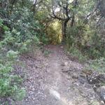 Sentiero Baglioni Perugia Vecchia Park